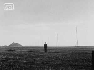 A wide shot from the film 'Petrol'